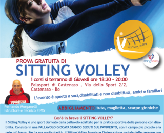 Sitting Volley