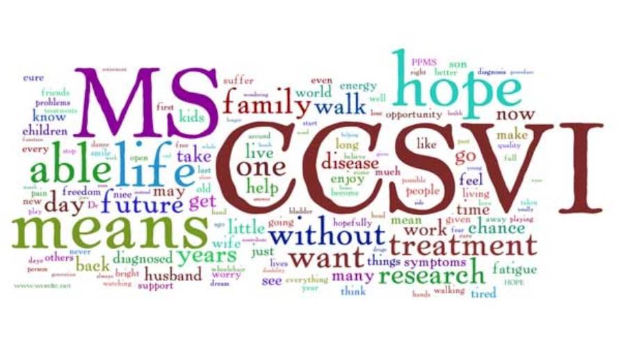 La ricerca nella CCSVI